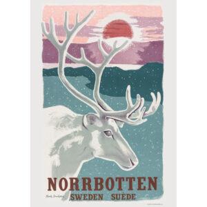 Poster NORRBOTTEN.